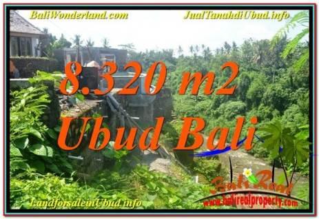 JUAL TANAH di UBUD BALI 83 Are View Sungai, Link. Villa