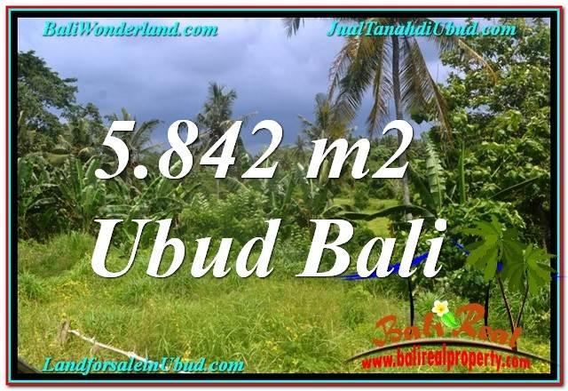 JUAL MURAH TANAH di UBUD 5,842 m2 di Sentral / Ubud Center