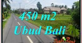 JUAL TANAH di UBUD BALI 5 Are di Sentral / Ubud Center