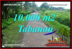 TANAH DIJUAL di TABANAN BALI 100 Are View sawah