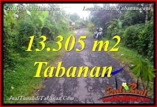 TANAH di TABANAN BALI DIJUAL MURAH 13,305 m2  View Kebun dan Sungai