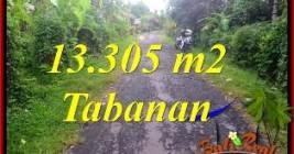 JUAL TANAH MURAH di TABANAN BALI 133.05 Are View Kebun dan Sungai