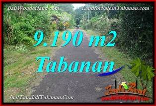 DIJUAL TANAH MURAH di TABANAN BALI 9,190 m2 di Tabanan Selemadeg Timur