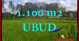 JUAL TANAH MURAH di UBUD 1,100 m2 View Sawah link Villa