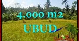 DIJUAL TANAH di UBUD Untuk INVESTASI TJUB661