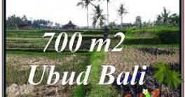 TANAH MURAH JUAL di UBUD BALI 700 m2 VIEW SAWAH, LINGKUNGAN VILLA