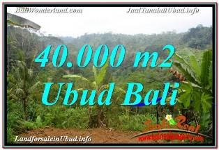 TANAH di UBUD JUAL 40,000 m2  VIEW SUNGAI DAN TEBING
