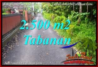 TANAH MURAH JUAL   TABANAN 2,500 m2  VIEW KEBUN, LINGKUNGAN VILLA