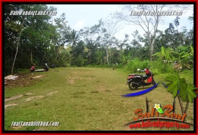 Tanah Murah  di Ubud Bali Dijual 9,400 m2  View sungai air terjun