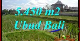 JUAL Tanah di Ubud Bali TJUB688