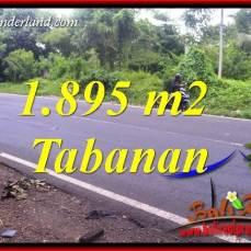 Dijual Tanah Murah di Tabanan Bali Untuk Investasi TJTB399