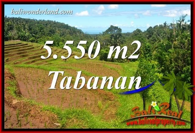 Tanah Murah Dijual di Tabanan Bali 5,550 m2 di Tabanan Selemadeg