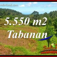 Dijual Murah Tanah di Tabanan Bali 55.5 Are di Tabanan Selemadeg