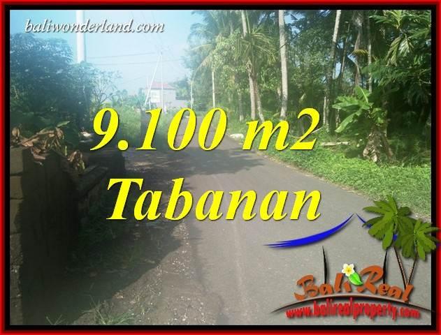 JUAL Tanah di Tabanan Bali 9,100 m2  View Sawah