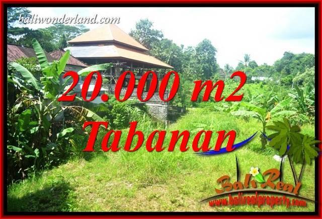 Tanah Murah  di Tabanan Bali Dijual 20,000 m2  View Sawah dan Sungai