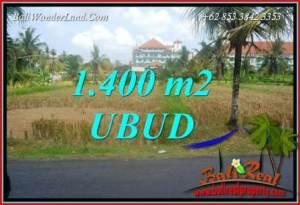 Dijual Murah Tanah di Ubud 14 Are di Sentral Ubud