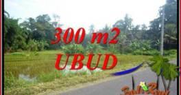 Tanah Murah di Ubud Dijual Untuk Investasi TJUB730