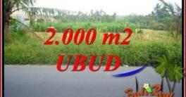 Tanah di Ubud jual Murah 20 Are View sawah lingk. restorant