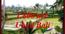 TANAH MURAH JUAL di UBUD BALI 1,800 m2 VIEW SAWAH LINK VILLA