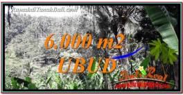 JUAL TANAH di UBUD Untuk INVESTASI TJUB750