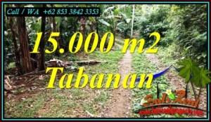 TANAH MURAH DIJUAL di TABANAN 150 Are di SELEMADEG BARAT