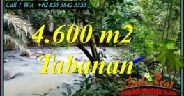 INVESTASI PROPERTI, TANAH MURAH DIJUAL di TABANAN BALI TJTB473