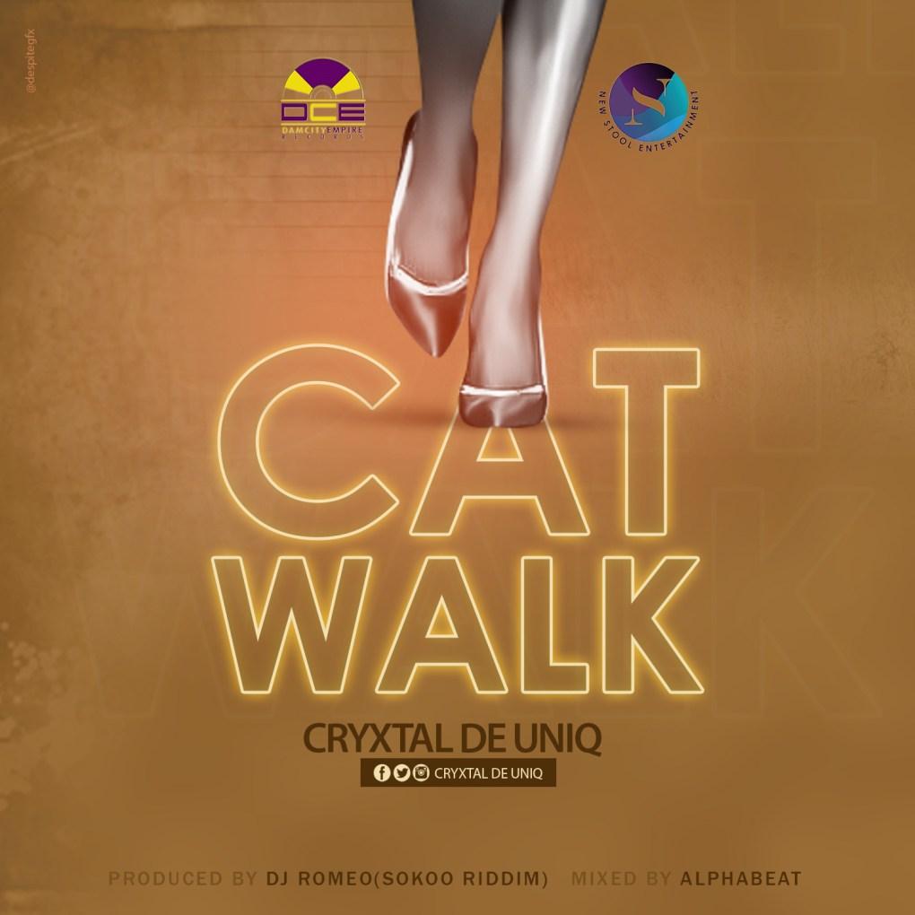 cat walk.dkoder.com