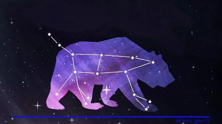 Büyükayı takım yıldızı