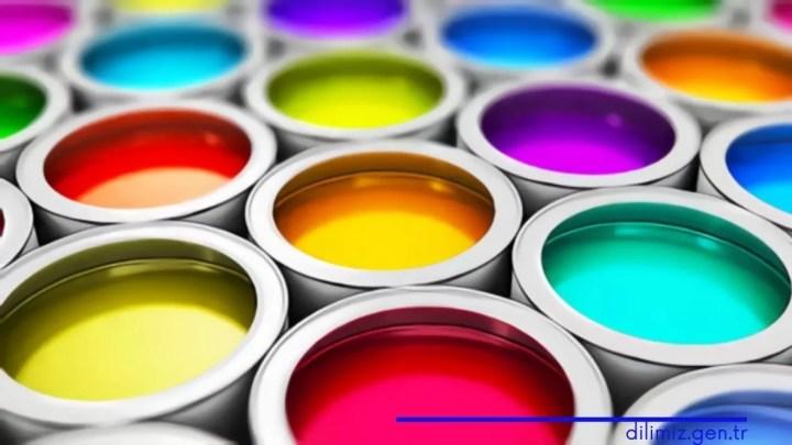 Renk Bilgisi Nedir?