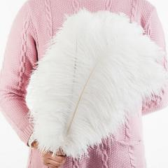 Ostrich Feathers – White Ostrich Feathers 30-35cm
