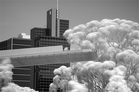 Infrared photography with a Canon 400D
