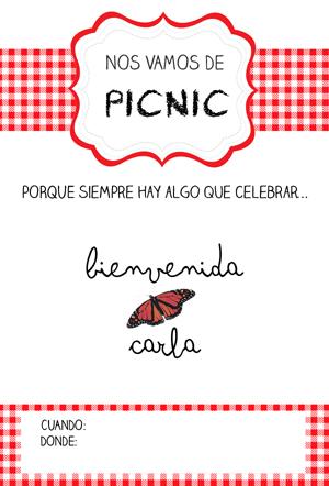 Nos vamos de Picnic: fiesta de bienvenida bebe {imprimibles y plantillas para descargar}