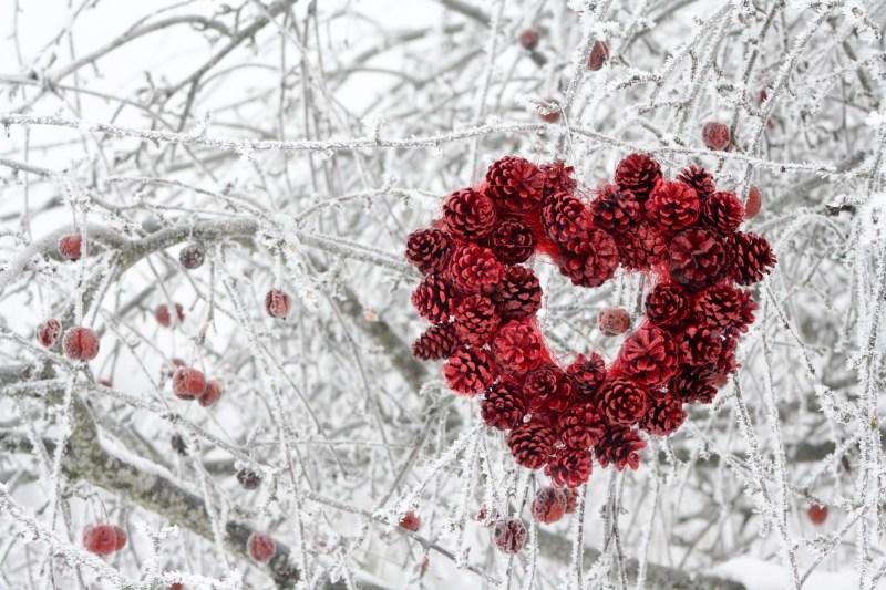 Sirds formas dekors no krāsotiem čiekuriem, sarkans