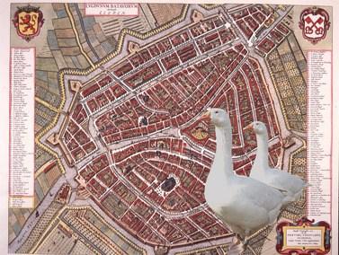 Stadsganzenbord Leiden – puzzeltocht