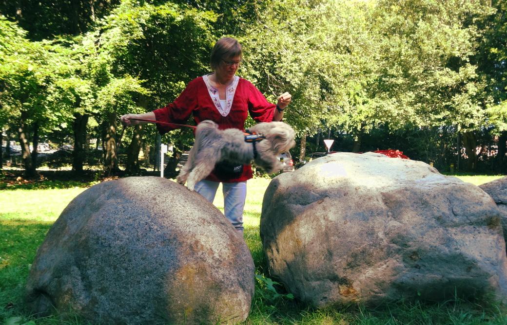 Max springer fra sten til sten