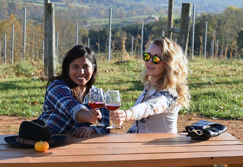 Loudoun County Wineries 50West