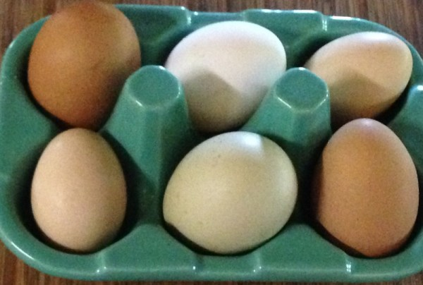 Farm Fresh Eggs for Beach Ready? New Fresh Potato Salad www.diningwithmimi.com