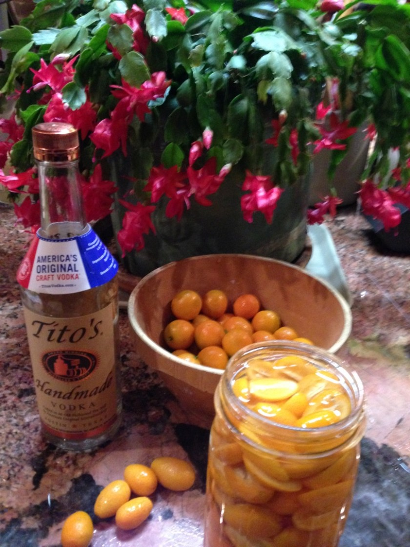 Kumquat Infused Vodka