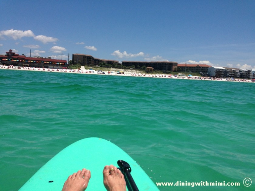 Paddle boards- Dolphins want play www.diningwithmimi.com