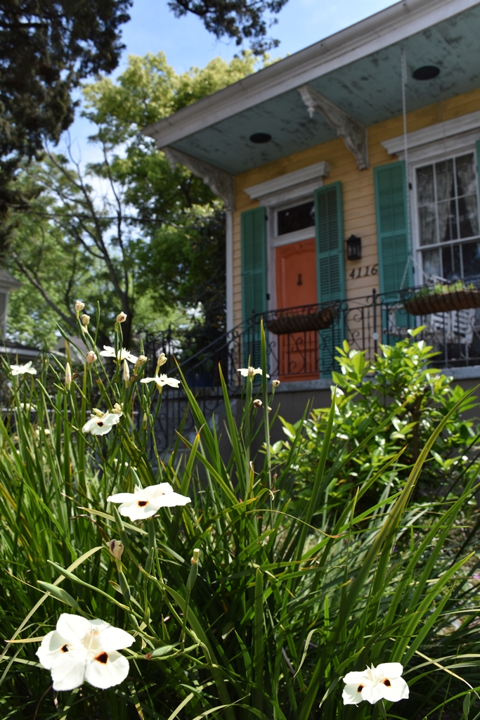 Quaint yellow shutgun house with green shutters and orange door Need a quickie- Drop into New Orleans for 48 hours www.diningwithmimi.com