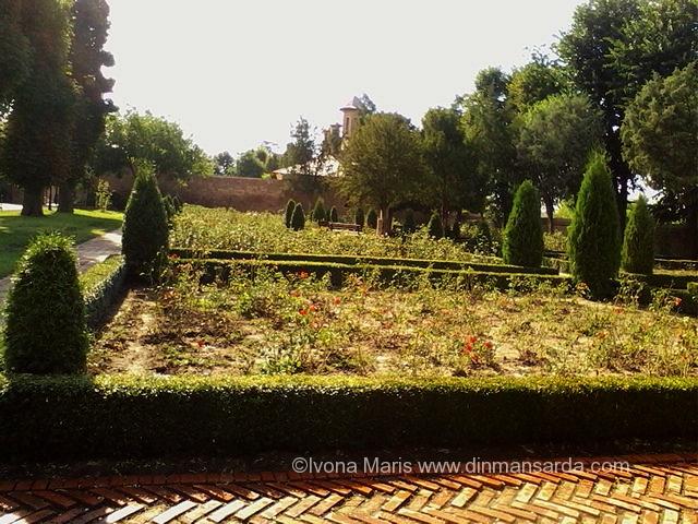 gradinile cu trandafiri ale palatului mogosoaia