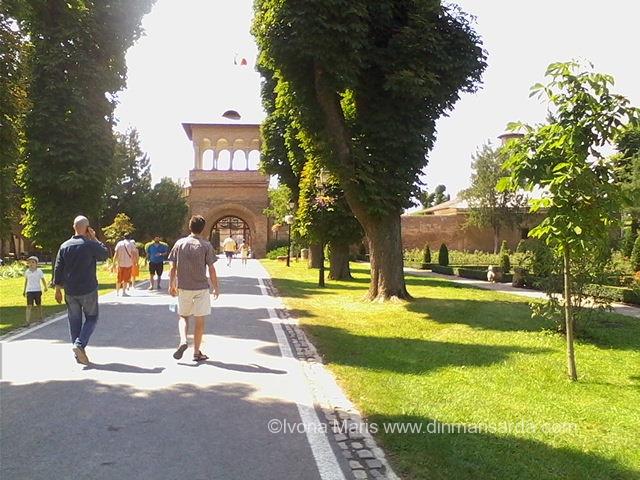 turnul portii mogosoaia