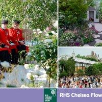 Cat costa o vizita la Chelsea Flower Show, cel mai important festival horticol din Marea Britanie