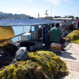 Peste proapsat adus de pescari