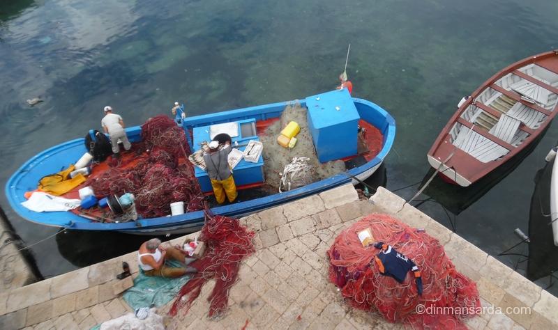Hranind pescarusii