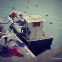 Povesti pescaresti in Gallipoli