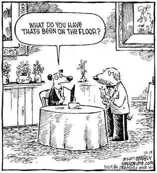 Dog Dining In Restaurant