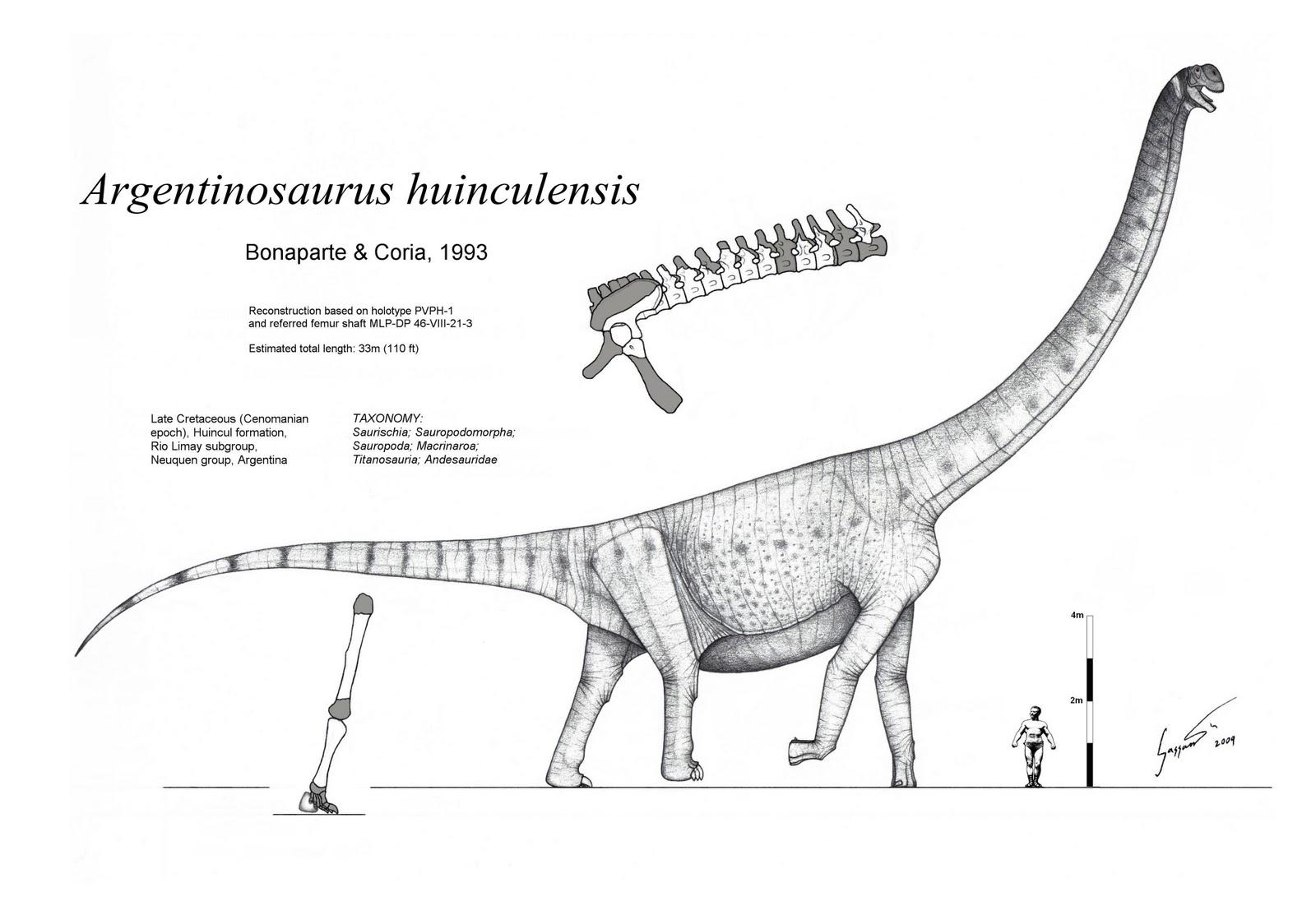 Years Dinosaurs Million Ago 80