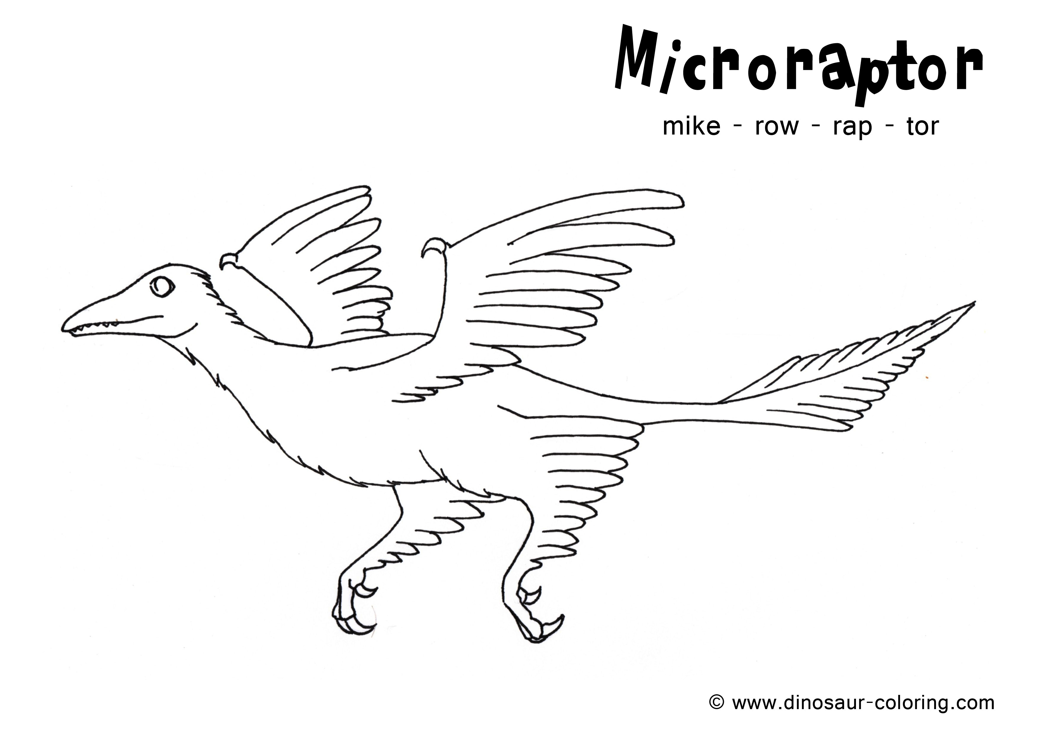Microraptor Coloring Sheet Dinosaurs Pictures And Facts