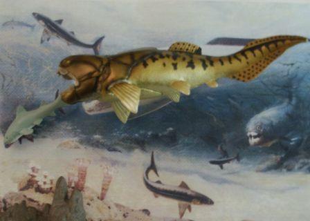 Paleozoic Seas in the Devonian Bothriolepis Drepanaspis